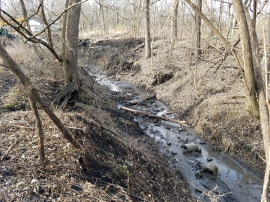 Over time, stormwater runoff has caused the banks of Yeader Creek to severly erode.