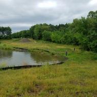 Prior to lake restoration work.