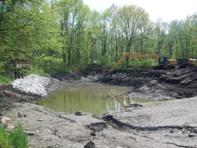 Sediment removal.