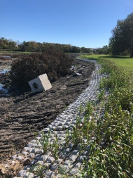 Shoreline stabilization with Flexamat near shelter 5 south of Easter Lake Dr. Cedar trees and concrete structures have been placed for fish habitat.