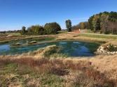 Fall 2018 - native wetland vegetation is established