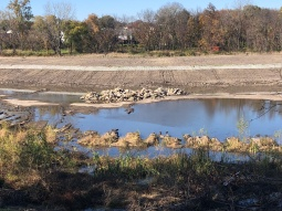 Large sediment removal and deepening/stabilization of shoreline. Rock piles placed for habitat.