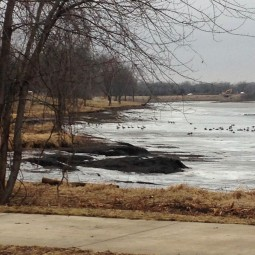 Post hydraulic dredging looking north from Easter Lake drive, no jetties present and shorelines are very shallow.